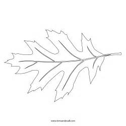 Leaf Outline by Printable Leaf Stencil Outline And Silhouette