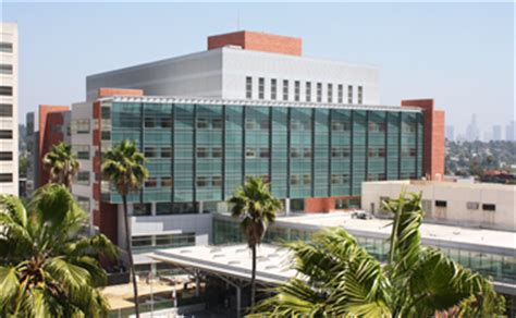 Usc Mba Healthcare by Curriculum Keck School Of Medicine Of Usc