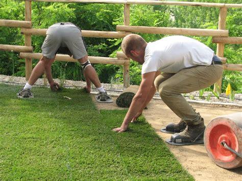 tappeto erboso pronto i nostri lavori per tappeti e manti erbosi a semina e a