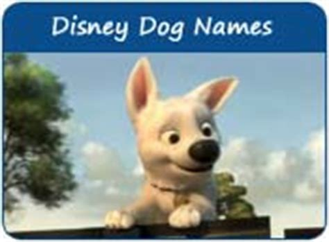 disney puppy names disney names names after disney characters page 1