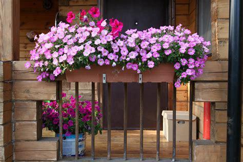 Flower Box 40 Window And Balcony Flower Box Ideas Photos