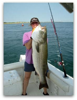 mass boat registration requirements massachusetts saltwater recreational fishing requires