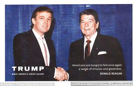 Airplane Wall Sticker donald trump trademarked make america great again days