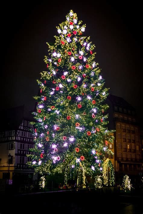 file strasbourg capitale de no 235 l grand sapin 2014 01 jpg