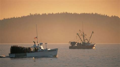 boat trash with maine lobster new england boating fishing your boating news source