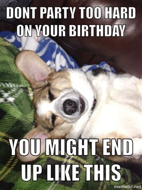 Corgi Birthday Meme - birthday corgi corgis pinterest