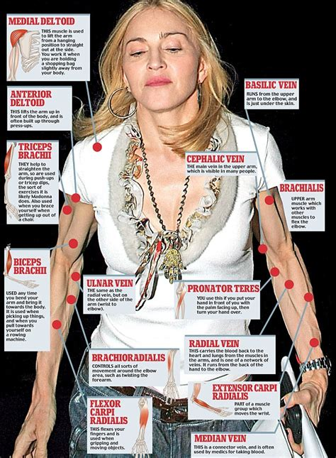 madonna arms new arms race sinew by sinew the making of madonna s