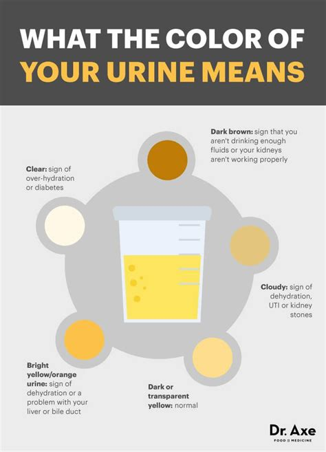 Could Cloudy Urine Be A Sign Of Detoxing best 25 cloudy urine causes ideas on color of