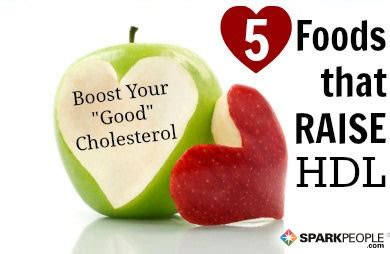 healthy fats to raise hdl what causes high cholesterol sparkpeople