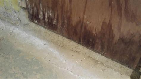 basement waterproofing basement waterproofing in