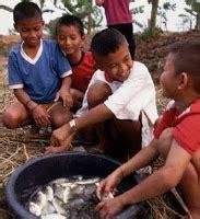 membuat anak lebih tinggi makan ikan buat anak anak lebih cerdas therapi ustdaz
