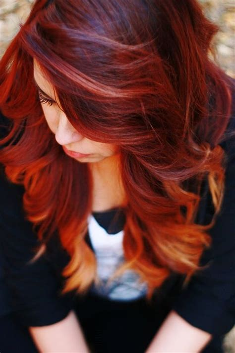 hair color dark on bottom red hair with blonde ombre i love the low lights up top