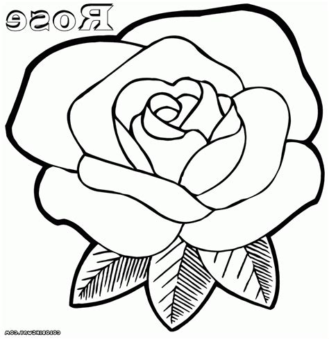 coloring pages more images roses 12 rose coloring pages to print printable kids coloring