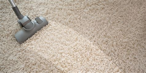 upholstery cleaning nyc eco carpet home design