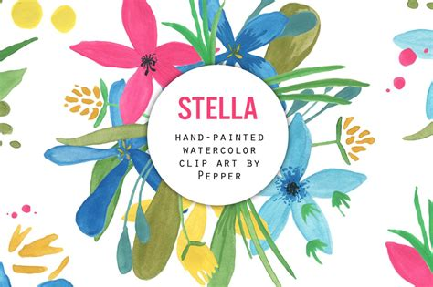 clipart stelle watercolor flower clipart stella illustrations