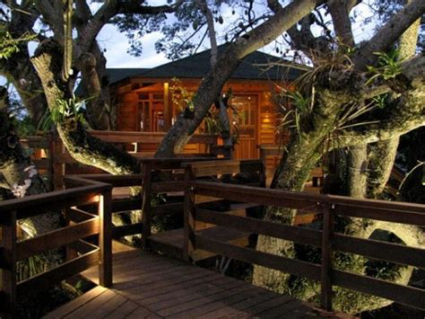 best treehouses 10 best treehouse plans and designs coolest tree houses ever