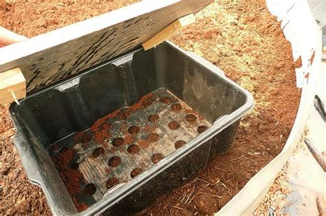 how to make a worm bed making a wicking bed and worm box for terry pinterest