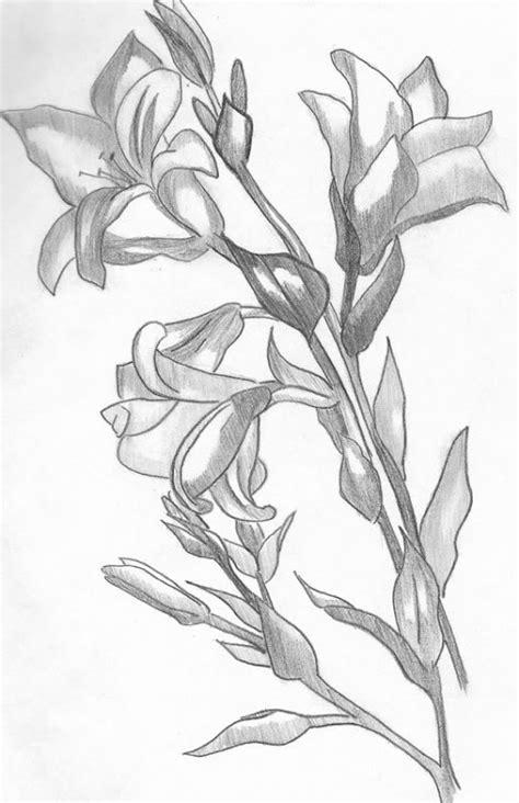 imagenes a lapiz flores rosas para dibujar de amor a lapiz search results