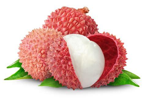 guide  common southeast asian tropical fruit organic