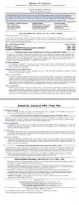 Fiscal Officer Sle Resume by Sle R 233 Sum 233 Chief Financial Officer After Executive Resume Writer
