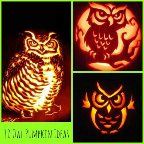 owl pumkin 1000 ideas about owl pumpkin 28 images 1000 ideas