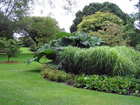 Botanical Garden Edinburgh Royal Botanic Garden Edinburgh