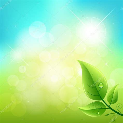 Foto Vector green leaf background stock vector 169 sarunyu