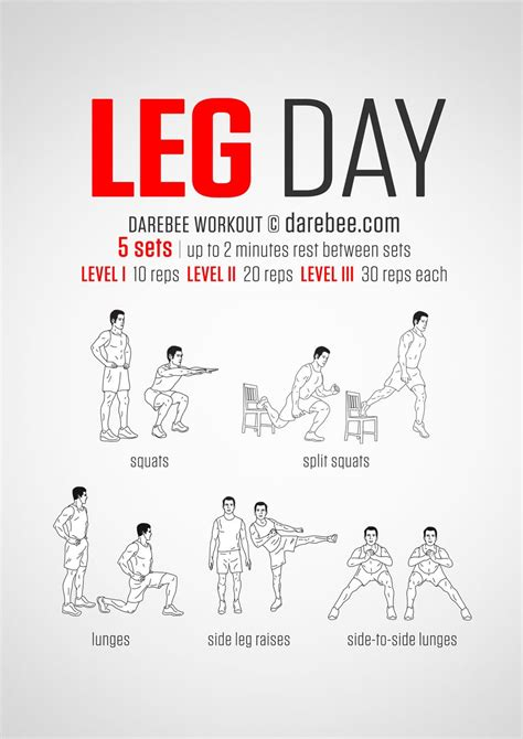 a and easy equestrian leg day workout you can do
