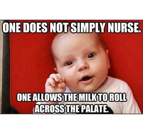 Breastfeeding Meme - 1000 images about breastfeeding humor on pinterest baby