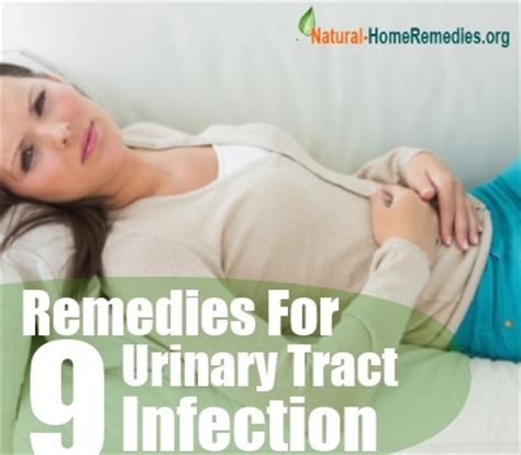 how to treat urinary tract infection in dogs how to get rid of viruses on your android phone 8000 best