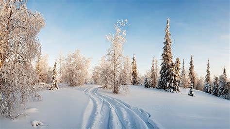 imagenes bonitas de invierno banco de imagenes y fotos gratis imagenes de invierno