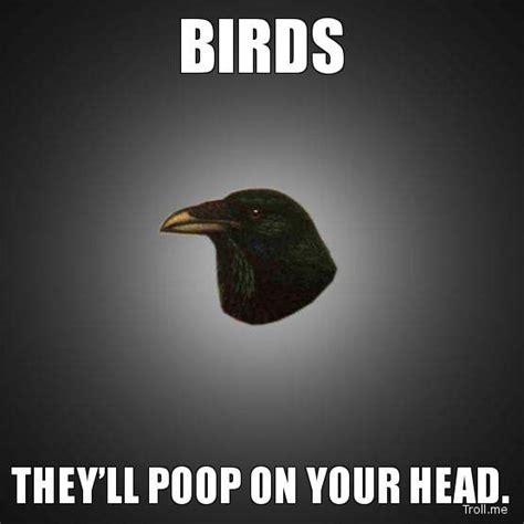 Bird Shit Meme - bird poop on head bing images