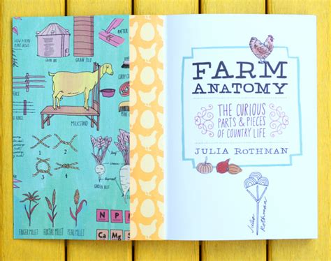 libro farm anatomy julia rothman farm anatomy julia rothman s illustrated guide to country life brain pickings