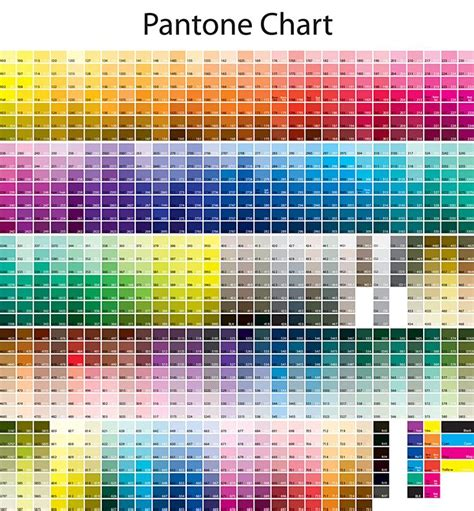 pantone color chart pantone color pms color chart and