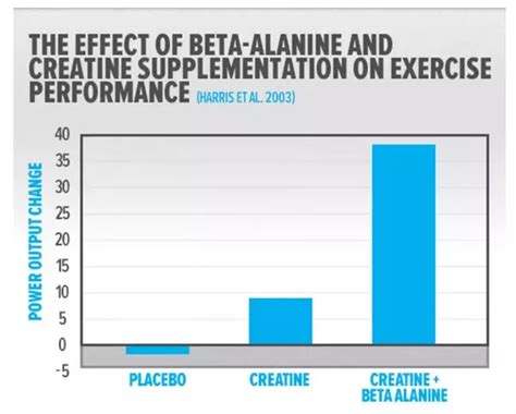 creatine beta alanine what is the difference between beta alanine and creatine