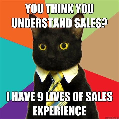 Business Cat Meme - meme business cat just great pinterest
