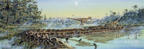 Book Duvet Cover A Pair Of Allosaurus Dinosaurs Explore Digital Art By Mark