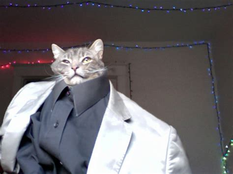 Cat In Suit Meme - irti funny picture 3152 tags cat head suit smart tux