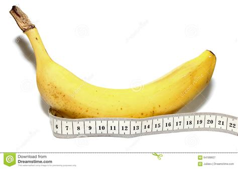 Big Size Banana by Large Banana And Measuring Isolated On White