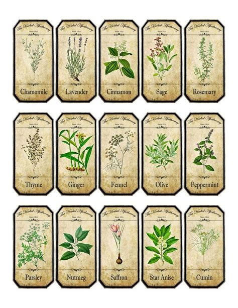 free printable vintage jar labels vintage inspired assorted herb spice food tea bottle jar