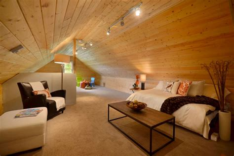 home designer pro attic room eco friendly ceiling designs for the modern home