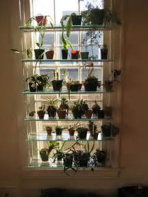 window glass shelves cool window shelving for orchids etc