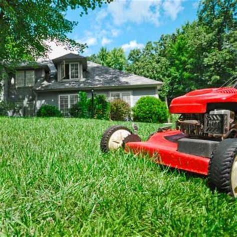 backyard services super lawn care servicetop cut lawn care service