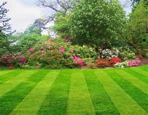 formal landscape local landscaping companies