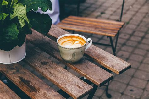 coffee  water plants