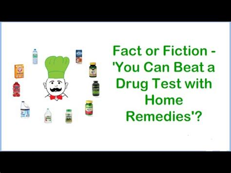 Home Remedies For Passing A Test In 24 Hours by How To Pass A Urine Test In 24 Hours