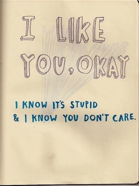 I Like You Quotes I Like You Okay I It S Stupid And I You Don T