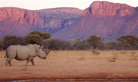 ecotourisme afrique du sud safari 224 la carte et