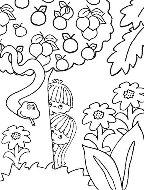 Coloring Page Adam And by 17 Best Images About Adam Bible Stories On