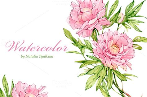 The Ghost Of Natalias Presentom by Watercolor Pink Peony Illustrations On Creative Market